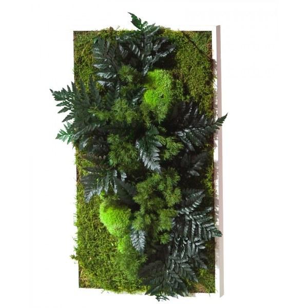Decoratiuni din plante stabilizate